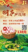 桐庐芦茨湾一日游(送农家土鸡蛋180个!)